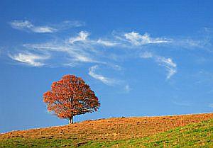 Podzimní víkendy: překvapivě mnoho možností!
